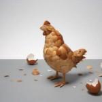 galinha feita com casca de ovos
