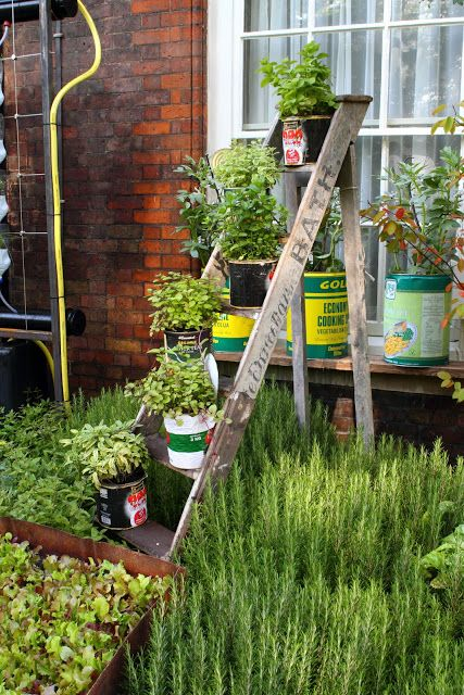 jardim vertical latas:Jardim vertical com material reciclado