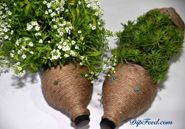 Faça já o seu próprio jardim reciclado de garrafa pet (Foto: dipfeed.com)