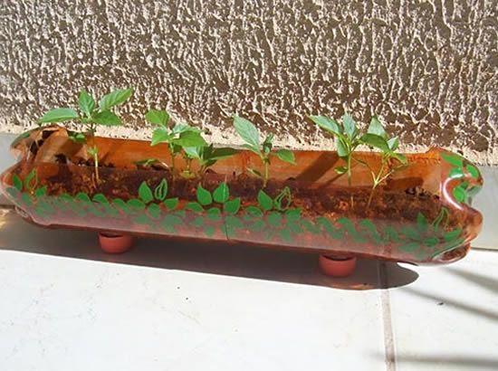 reciclagem de garrafa pet no jardim dicas