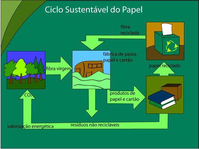 reciclagem do papel processo passo a passo