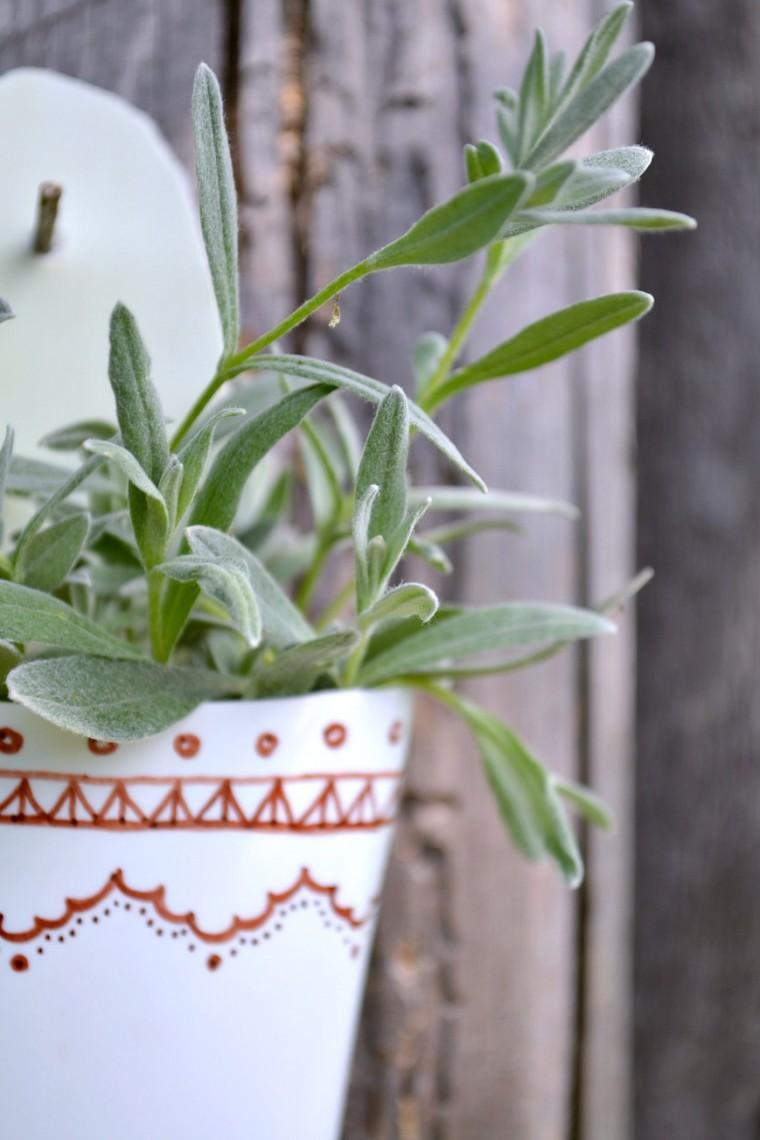 Reciclagem no Meio Ambiente Como fazer um vaso de plantas com embalagem plástica