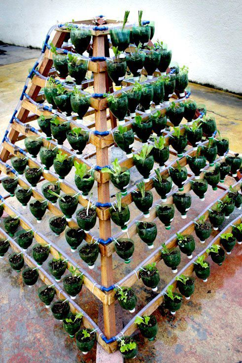 reciclagem de garrafa pet para plantar ideias