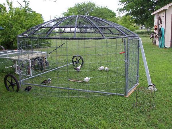 galinheiro com antena parabólica