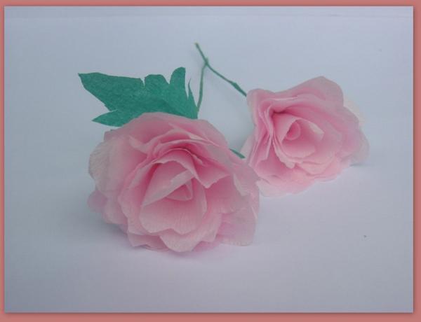 rosa em papel simples