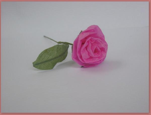 rosa em papel comum