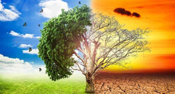 Reciclagem no Meio Ambiente Impacto Ambiental no Brasil