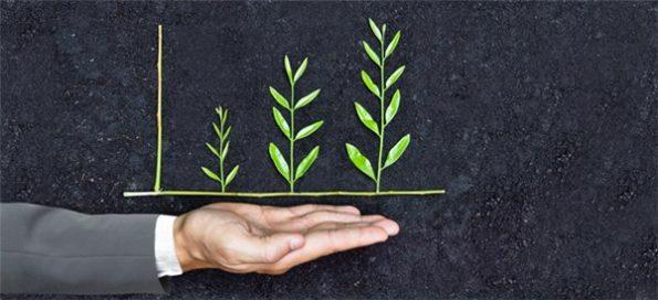 Preservação-ambiental-e-sustentabilidade