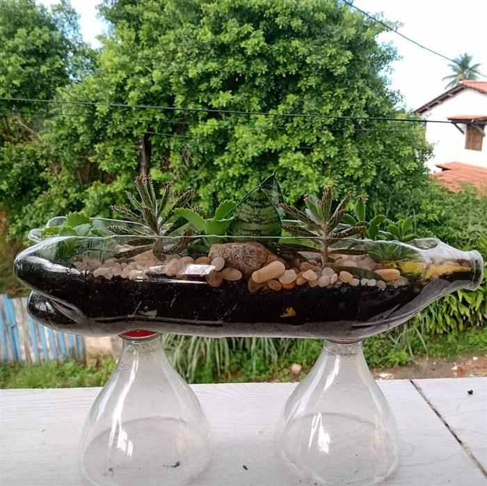 artesanato com garrafa pet para plantas